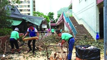 ▲「山竹」導致順天邨內多處樹木倒塌,鄺星宇組織義工和熱心街坊自發清理樹木
